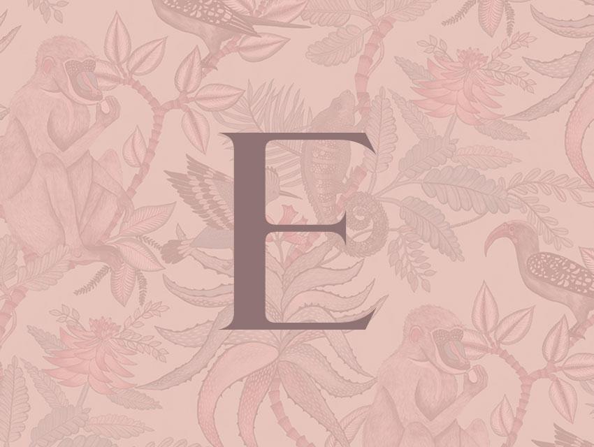 Diseño identidad corporativa y web Enoa Studio